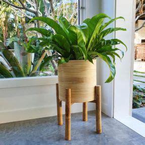 cangu bamboo planter  stand