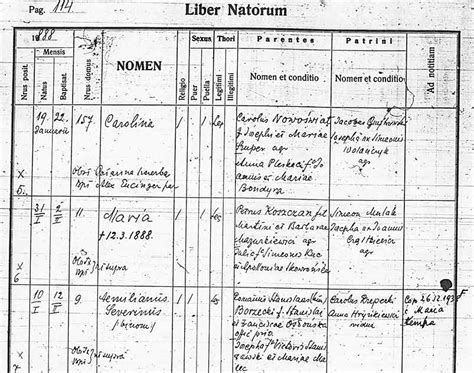 Rzeszow Poland Birth Records Parish Record From Galicia Or Poland With Term Meanings