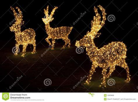 illuminate per natale renne illuminate per natale fotografia stock immagine