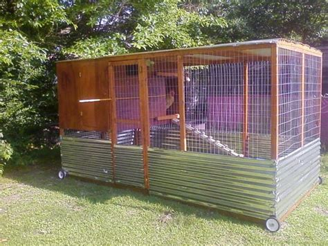 backyard chicken care chicken coop backyard 7 backyard chickens chicken runs