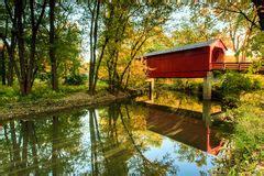 bridge over dry creek in woods stock photos image: 8075833