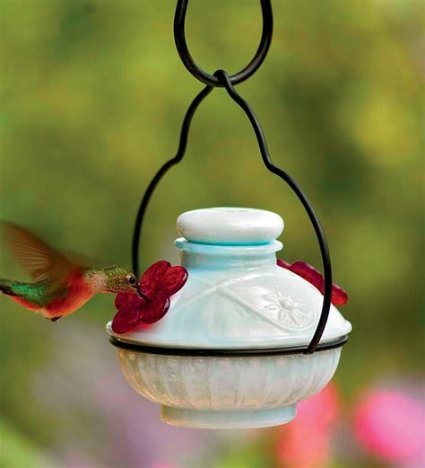 17 best ideas about hummingbird feeder mix on pinterest