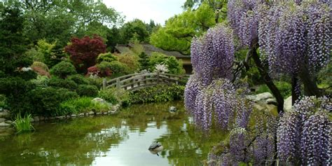 outdoor wedding venues in torrance ca hakone estate and gardens weddings get prices for