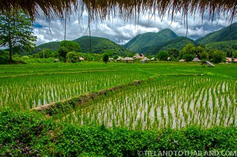 pai chan cottage trip to pai thailand eat sleep repeat tieland to