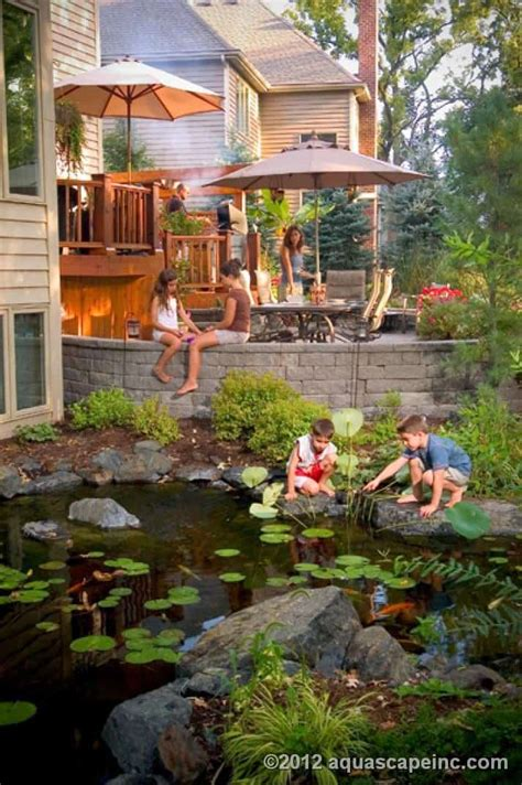 backyard ecosystem ponds premiere aquascapes