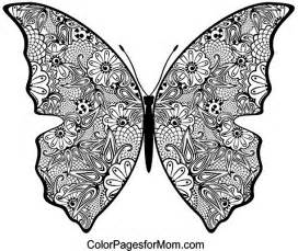 butterfly coloring 19