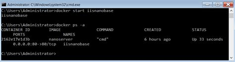 docker start image containers in windows server 2016 tp5