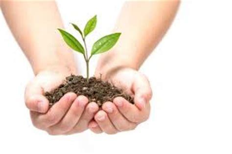nurturing dreams a parent s guide to career development for children books femi taiwo on monday nature vs nurture nurturing nature