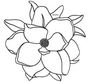magnolia color louisiana magnolia coloring gif
