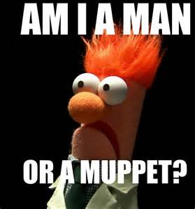 Muppet Meme - beaker meme related keywords beaker meme long tail