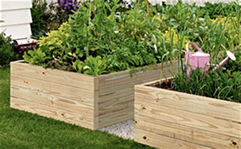 pressure treated wood for raised beds not found