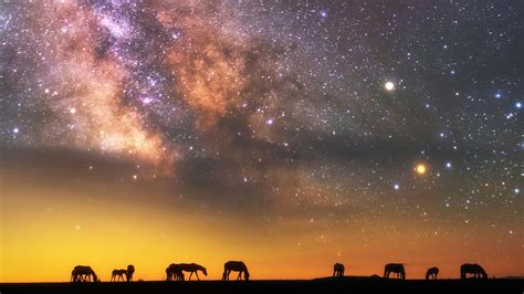 imagenes jpg wallpaper milky way over the savanna astrophotography wallpaper