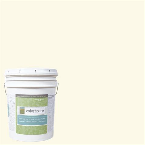 home depot yolo colorhouse paint colorhouse 5 gal air 01 eggshell interior paint 562113