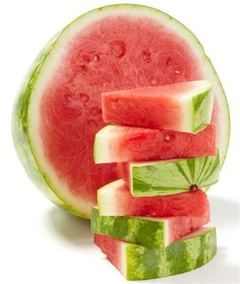are apples ok for dogs best 25 can dogs eat watermelon ideas on can