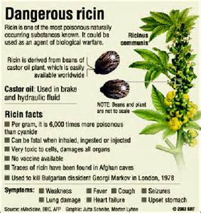 Grow Table Federal Government Under Attack By Ricin Poison Letters