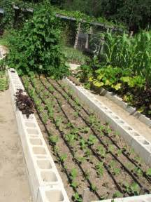 drip irrigation for home gardens