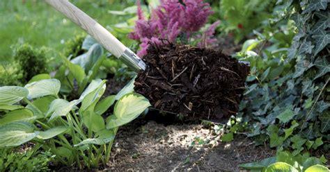 gartenboden gestalten mulch eine sch 252 tzende decke f 252 r den gartenboden mein