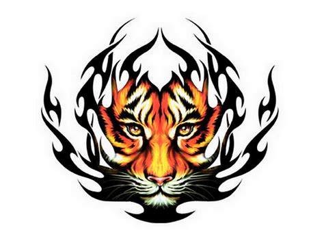 fire tiger tattoo designs amazing tribal tiger design