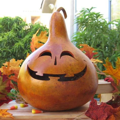 gourd crafts for 612 best gourds images on