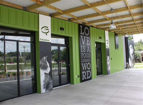 environmental branding greenville humane society by chad