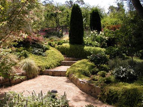 Decorative Trees With Lights San Rafael Mediterranean Garden Mediterranean