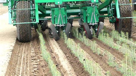 Tree Planter Machine by Automatic Transplanter For Pine Tree
