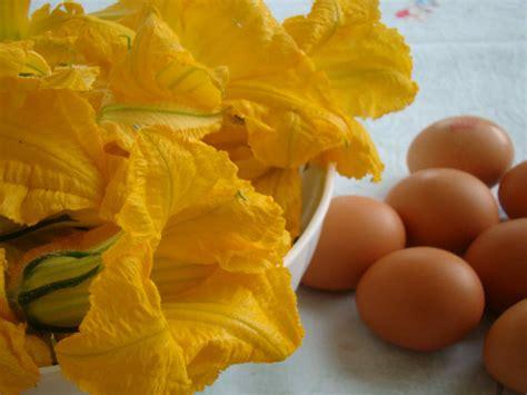 frittata ai fiori di zucca frittata ai fiori di zucca 226 cose di cucina
