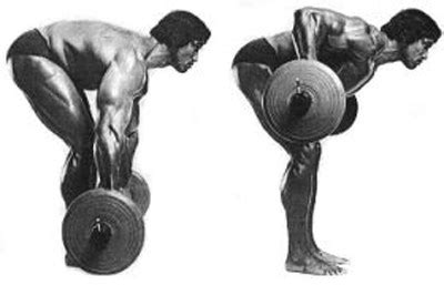 Machine Bench Press Vs Bench Press Barbell Row Question Fitness