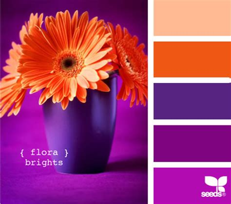 purple and orange color scheme home dzine nature s colours for a home