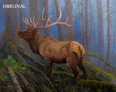 can you pattern elk stag cross stitch pattern deer elk etp