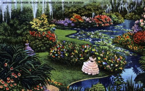 florida flower garden florida memory southern flowers bloom in cypress gardens