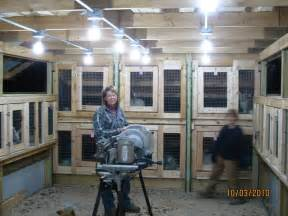 Pallet Barn Plans The Bunny Barn Flemish Giant Rabbits Quot The Gentle Giants Quot