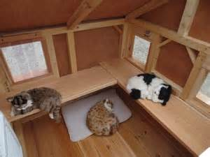 outdoor cat houses for multiple cats 25 best ideas about heated outdoor cat house on pinterest dog in heat amazing dog