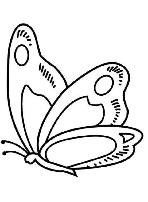 imagenes de mariposas animadas para colorear dibujos de mariposas para colorear