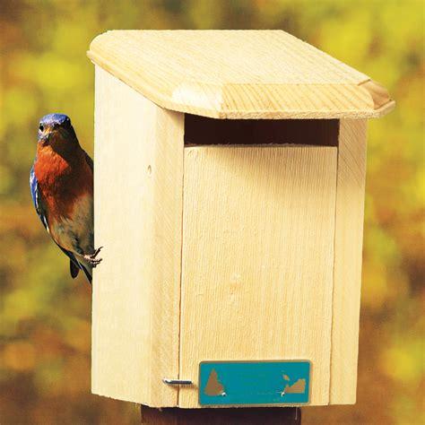 sparrow bird house plans sparrow bird house plans numberedtype