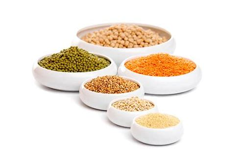 spice n pulses coupons