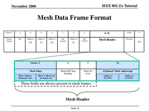 format data cd ieee 802 11s tutorial overview of the amendment for