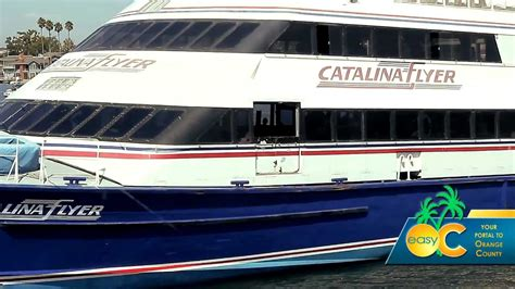 boats to catalina island from los angeles things to do in los angeles catalina flyer boat to