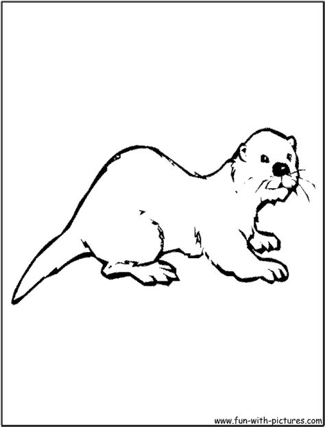 Otter Coloring Pages Preschool | otter coloring page of otter preschool pinterest