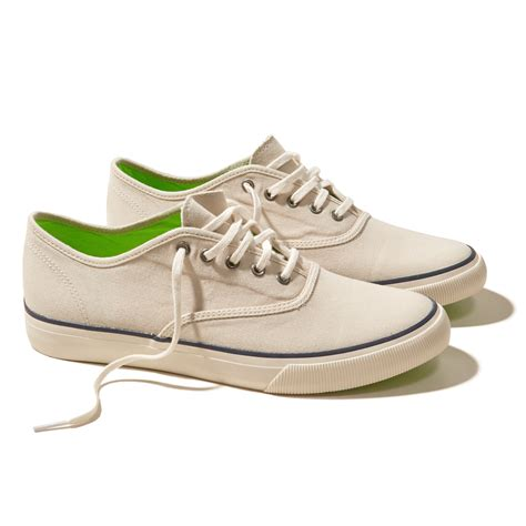 hollister shoes mens hollister lace up sneaker in for lyst