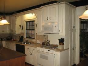 Kitchen Cabinet Paint Ideas by Kitchen Cabinet Ideas For Painting Kitchen Cabinet