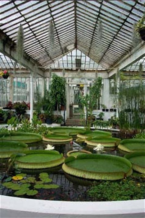 Botanic Gardens Dublin Happy St S Day Thinking Outside The Boxwood