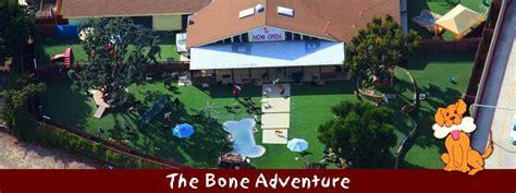 the bone adventure backyard 28 images the bone