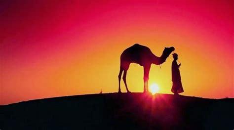 es mas f 225 cil que un camello pase por el ojo de una aguja 191 sabias esto camellos bactrianos y dromedarios naves del desierto biolog 237 a