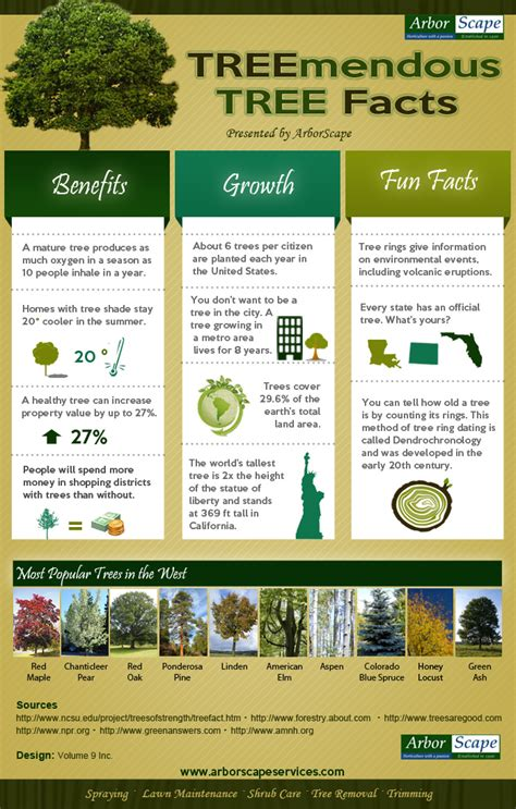 interesting tree facts