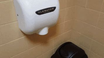 public bathroom fun restroom gifs find share on giphy