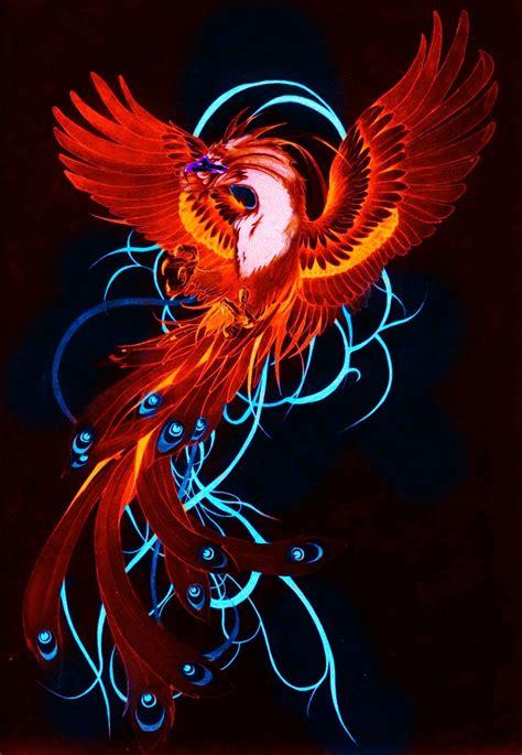 phoenix tattoo in spalding tattoo f 202 nix fenix colorida atendendo a pedidos