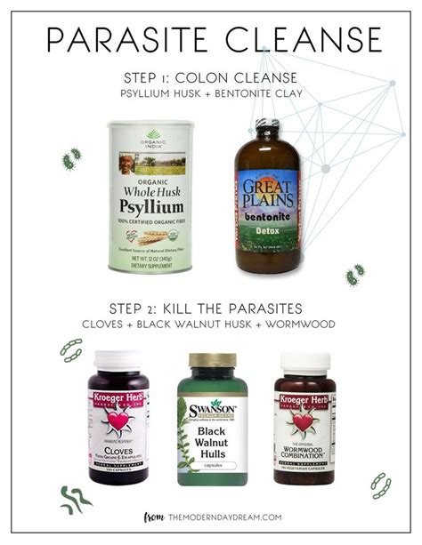 4 Ingredient Recipe To Detox Your Colon by 100 Colon Cleanse Recipes On Colon Cleanse
