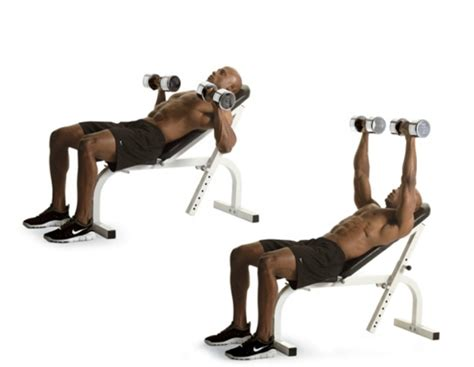 dumbbell bench press muscles worked the best exercises for your chest men s health singapore