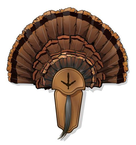 turkey fan mount template 5 diy turkey taxidermy projects